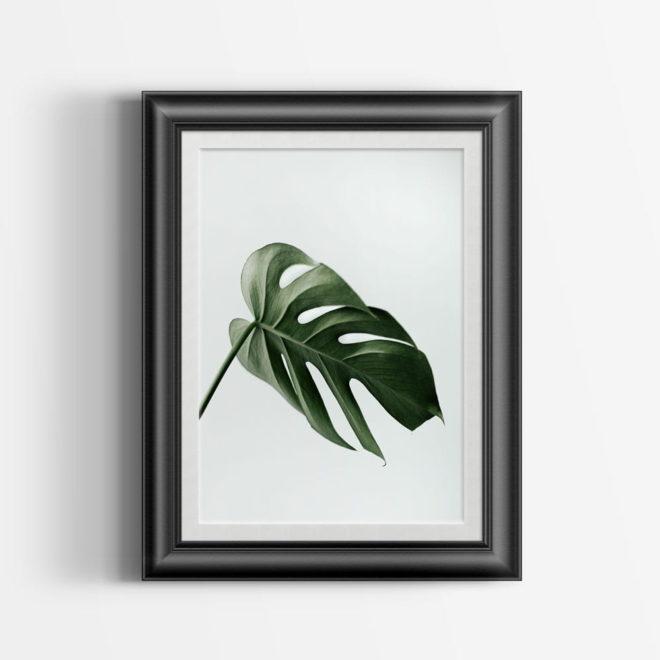 botanic-art-p12